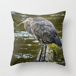 Rainy Day Heron Throw Pillow