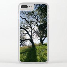 Sun Behind Live Oaks Clear iPhone Case