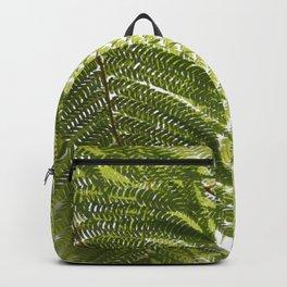 House Plant Fern Leaf Silhouette Sunlight Zen Photo Backpack