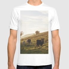 Cattle grazing on mountainside. Derbyshire, UK. White MEDIUM Mens Fitted Tee