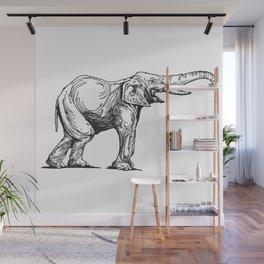 Elephant Elefante Wall Mural