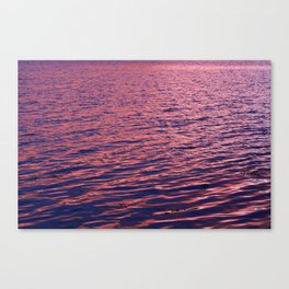 Pink Sea Canvas Print