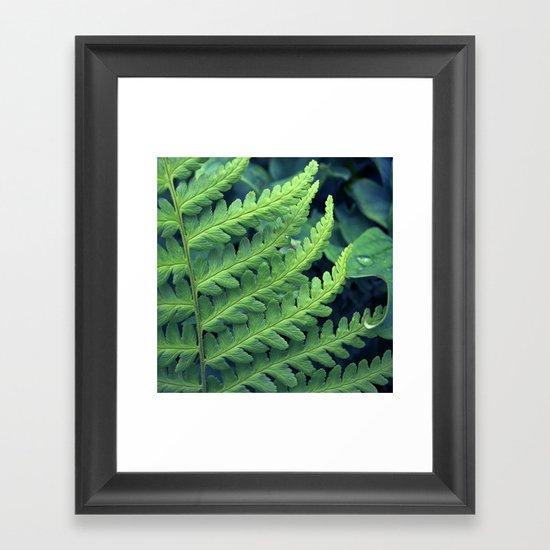 green fern abstract VII Framed Art Print