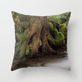 Paradise Creek II Throw Pillow