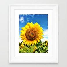 Happy Sunflower  Framed Art Print