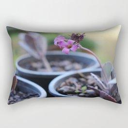 Unique Rectangular Pillow