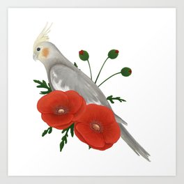 Light Grey/Cinnamon Cockatiel Art Print