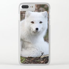 Polar Fox by Anne Elisabeth Clear iPhone Case
