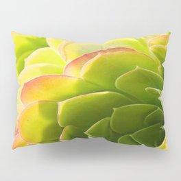 BEAUTIFUL SUCCULENT Pillow Sham