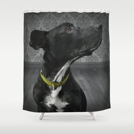 COBY (shelter pup) Shower Curtain