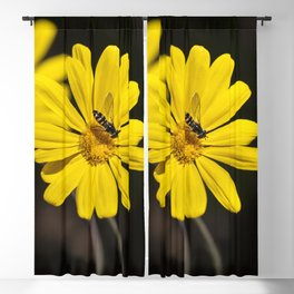 Hover Fly Blackout Curtain