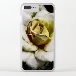 Solo Rose Clear iPhone Case