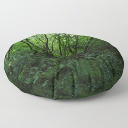 Old Growth Forest Floor Pillow