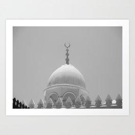 White Dome Art Print