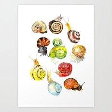 snails Art Print