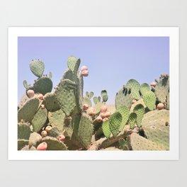Cactus 2 Art Print
