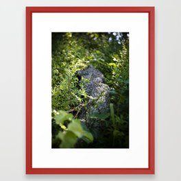 Overgrown Log Framed Art Print