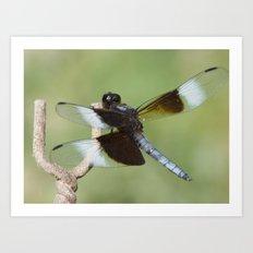 dragonfly 2016 II Art Print