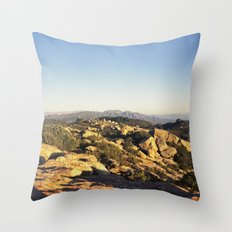Lizard's Mouth Throw Pillow