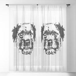 BORDER TERRIER DOG Sheer Curtain