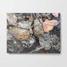 A break in the rain, dried collard green leaves Metal Print