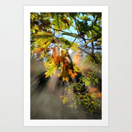Breath Of Autumn Art Print