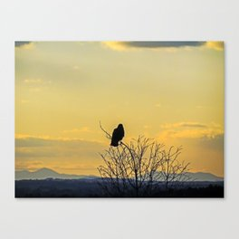 Crow's Eye View from Portland, Maine Canvas Print