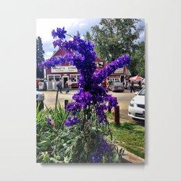 Flowers in Talkeetna, Alaska Metal Print