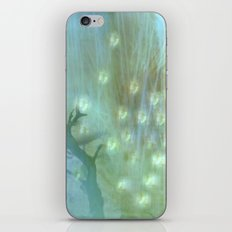 WHISPINESS OF SPRING iPhone & iPod Skin