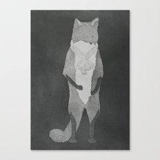 Fox Fur Canvas Print
