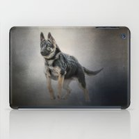 german shepherd iPad Cases featuring Feet First - German Shepherd Puppy by Jai Johnson