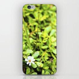 La vida  iPhone Skin