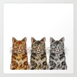 Triple Tabbies Cats Art Print