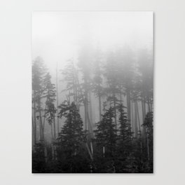 Foggy Forest Chinook Washington Grey Photography Print Misty Northwest Canvas Print