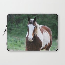 Tennessee Painted Pony Laptop Sleeve