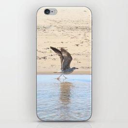 Seagull bird taking off iPhone Skin