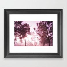 Sunrising Framed Art Print