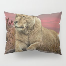 African Female Lion in the Grass at Sunset Pillow Sham