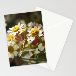 a whole bunch of Stationery Cards