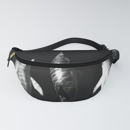 Black and white dolphins Fanny Pack