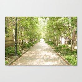 Walk Me down the Trail  Canvas Print