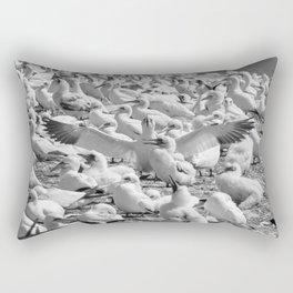 Fou de Bassan #3 Rectangular Pillow