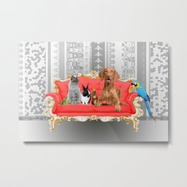 Pet Animals Baroque Couch - Dog - Cat - Bunny - Squirrl Metal Print