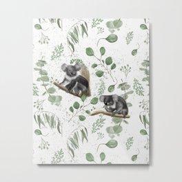 Eukalyptous koalas on white Metal Print
