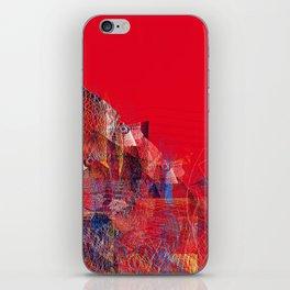 11617 iPhone Skin