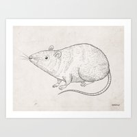 rat Art Prints featuring rat by raeioul