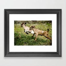 galop Framed Art Print