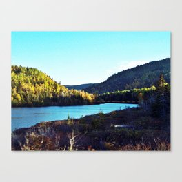 River to Wilderness Canvas Print