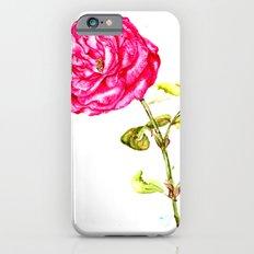 Pink Rose  iPhone 6s Slim Case