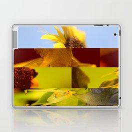 crash_ 03 Laptop & iPad Skin